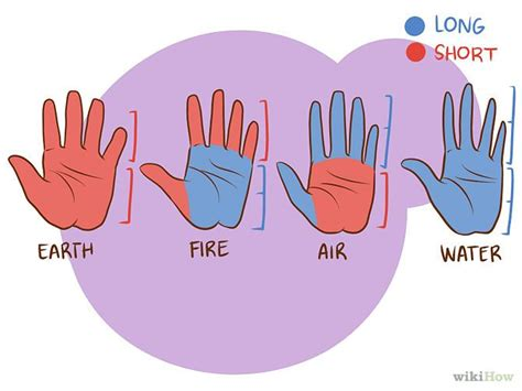 Cheirognomy: The study of the shape of hands and fingers