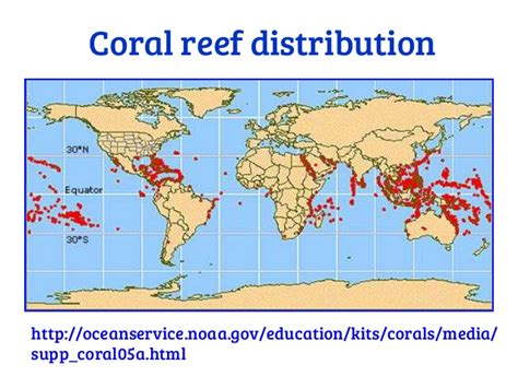 Land Based Pollution Threats To Coral Reefs