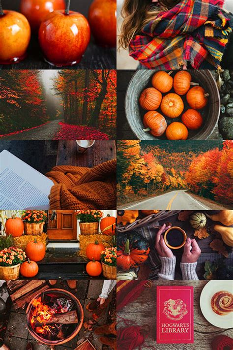 All About Fall Pictures, Photos, and Images for Facebook